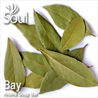 Aroma Soap Bar Bay Leaf - 500g