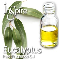 Fragrance Eucalyptus - 50ml