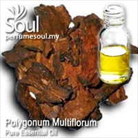 Pure Essential Oil Polygonum Multiflorum - 50ml